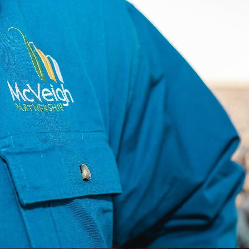 McVeigh Partnership Experience